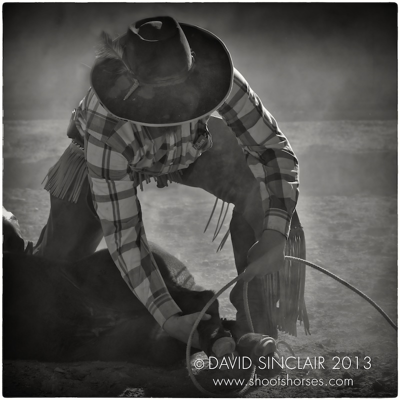 Buckaroo cowboy kneels in the dirt to undo lasso.